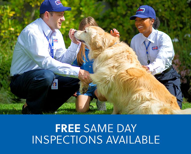 Exterminator & Pest Control Bakersfield CA | Clark Pest Control